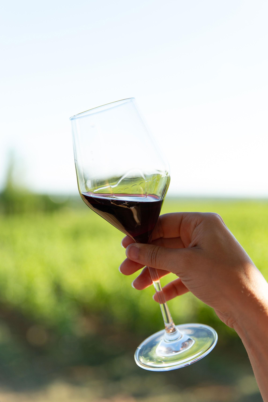 Resuelto el misterio de las 'lágrimas' que forma el vino en una copa