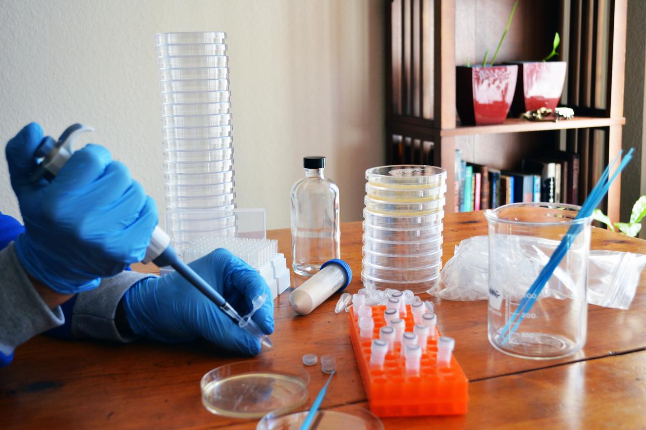 Editar el ADN desde casa: la moda que podría convertirse en epidemia