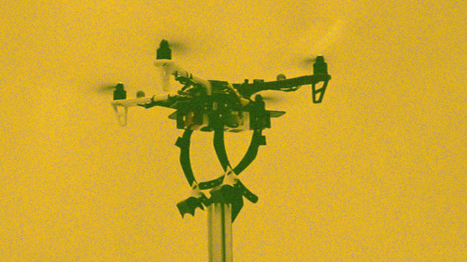 La importancia de que este dron sea capaz de posarse como un pájaro